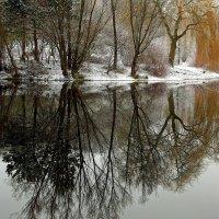 Зимнее отражение :: Alexander