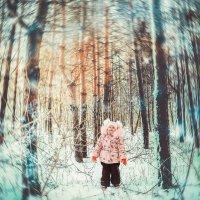 Зимний лес :: Николай POPOV