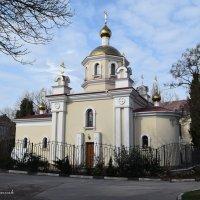 Храм святителя Луки :: Zinaida Belaniuk