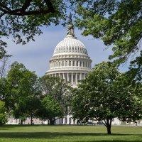 United States Capitol :: Александр Чекмарев