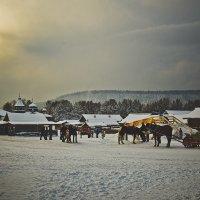 катание на лошадях :: Светлана Светлакова