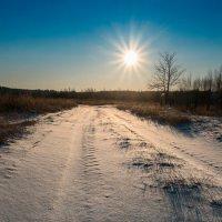 Зимнее солнце :: Андрий Майковский