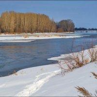 Река в феврале :: Любовь Потеряхина