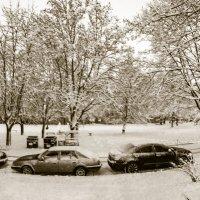 Зима во дворе :: Александр Сальтевский