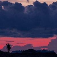 Unharness The Horses, Guys! :: Владимир Колесников