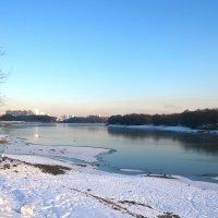 Прогулка у реки :: Николай Дони