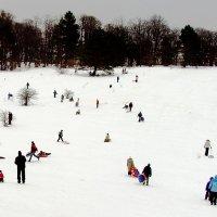 вокруг снег :: Валерий Дворников
