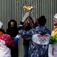Олимпийский огонь :: Елена Ермакова