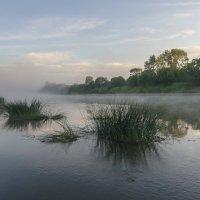 Туман над рекой :: Валентин Котляров
