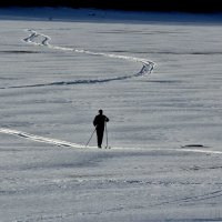 Лыжник :: WADIM *****