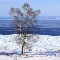 Байкал в феврале :: Алексей Белик