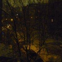 Зимняя ночь :: Татьяна Юрасова