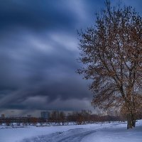 Зимняя тишина :: Алексей Соминский