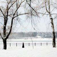Снежная графика :: Черных Ксения