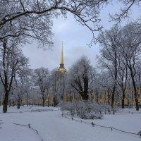 Санкт-Петербург, Адександровский сад. :: Александр Дроздов