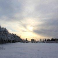 Зимнее утро :: Наталья Лунева
