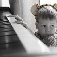 Никакого желания стать Моцартом :: Михаил Онипенко