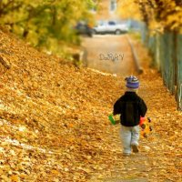 Осенняя пора :: DaRiA V