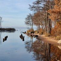 Утро на воде :: Николай Танаев