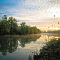 утро на реке Дон :: Александра Основина