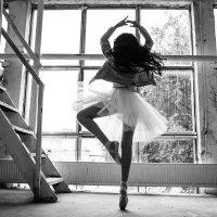 Балерина :: Татьяна и Александр Беленьковы