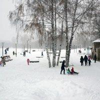 """Зима, снегопад и """"И этот миг называется - жизнь"""" :: Елена Ахромеева"""