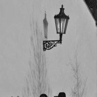 ...китайские фонарики... :: Ольга Нарышкова