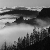над облаками :: Sergey Sergeev