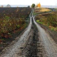 Две  дороги,  два  пути.. :: Валерия  Полещикова