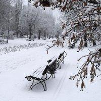 Скамеечка зимой :: Alexander Varykhanov
