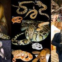 Принимаем заказы на съёмку с нашими экзотическими животными: :: Аренда Экзотических Животных для съемок