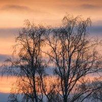 На закате :: Андрий Майковский