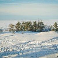 Северодвинск. Белое :: Ирина Коваленко