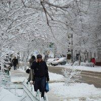 Снежный день :: Инна Савинская