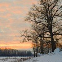 Краски заката :: Любовь Потеряхина