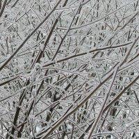 Хрустальная зима :: Александр Резуненко
