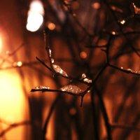 Ах, эта прекрасная зима!) :: Aleksandra Santey