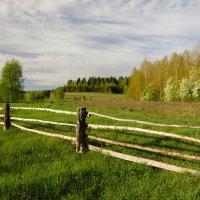 Весна в сельской местности :: Валентин Котляров