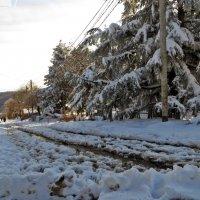 По дорогам зимы :: Наталья (D.Nat@lia) Джикидзе (Берёзина)