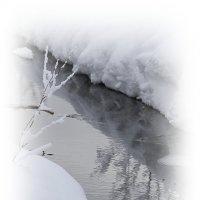 Скромное обаяние февраля... :: Tatiana Markova