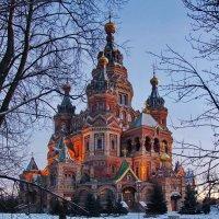 Собор Петра и Павла. :: Ирина Нафаня