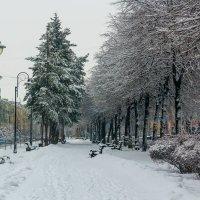 Зимний день... :: Юрий Стародубцев