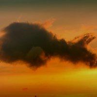 Небесное чудо прилетело. :: ОЛЕГ ПАНКОВ