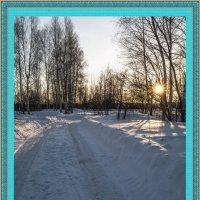 Зимние красоты. :: Андрей Чиченин
