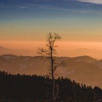 закат :: Dennis Wiesner