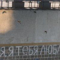 Под пролетом старого моста :: Валентин Котляров