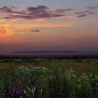 Нежное утро :: Наталья Лакомова