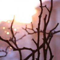 закат за окном :: Stanislava Kudinova