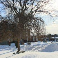 Снежный денек :: Виктория Михайлова