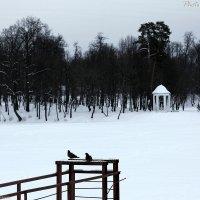 Опустевший парк (7912) :: Виктор Мушкарин (thepaparazzo)